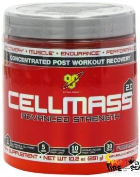 Cellmass 2.0 291 g - 579